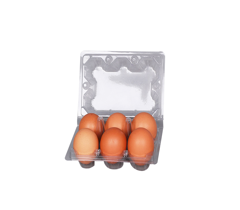 The Best Egg Trays For Your Fish